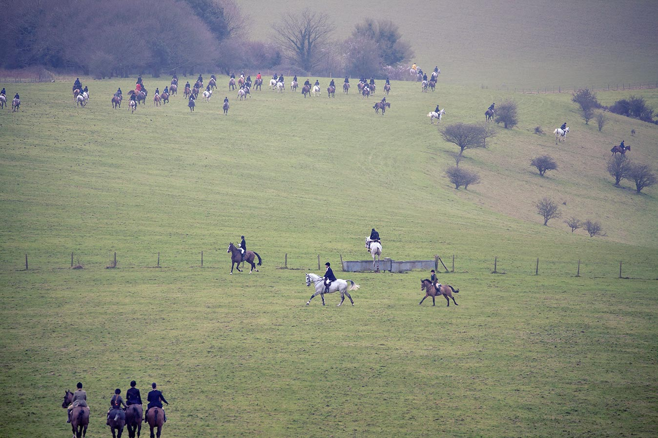 The Charlton hunt field riding towards the Goodwood Estate