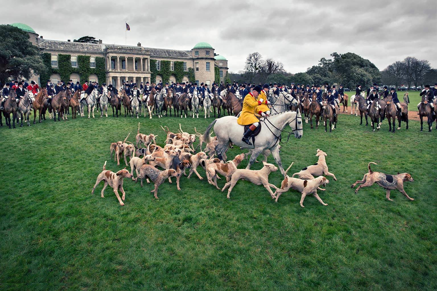 Huntsman leading away the hounds from Goodwood House