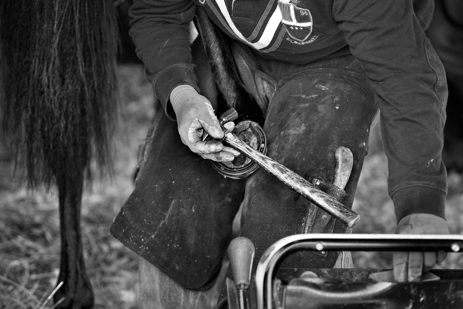 Farrier-at-William-Knights-B-W
