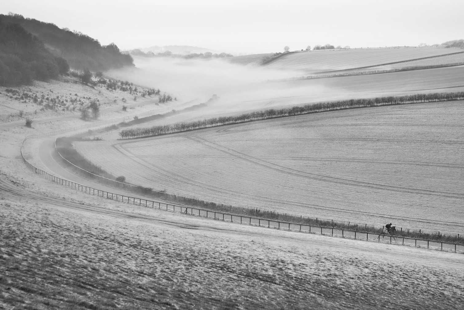 Freezing-mist-on-the-gallops