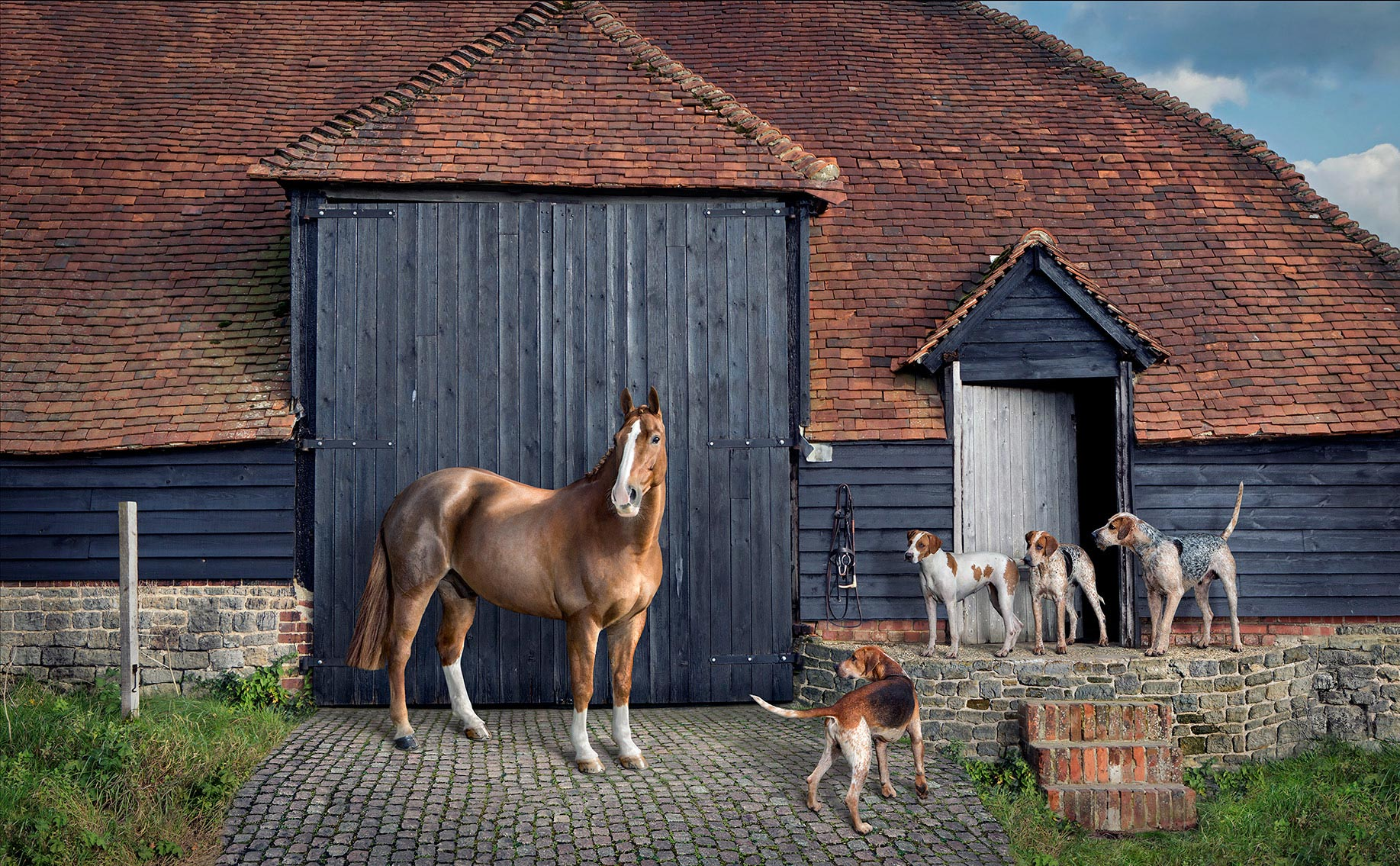 Malakye_Horse_and_Hounds