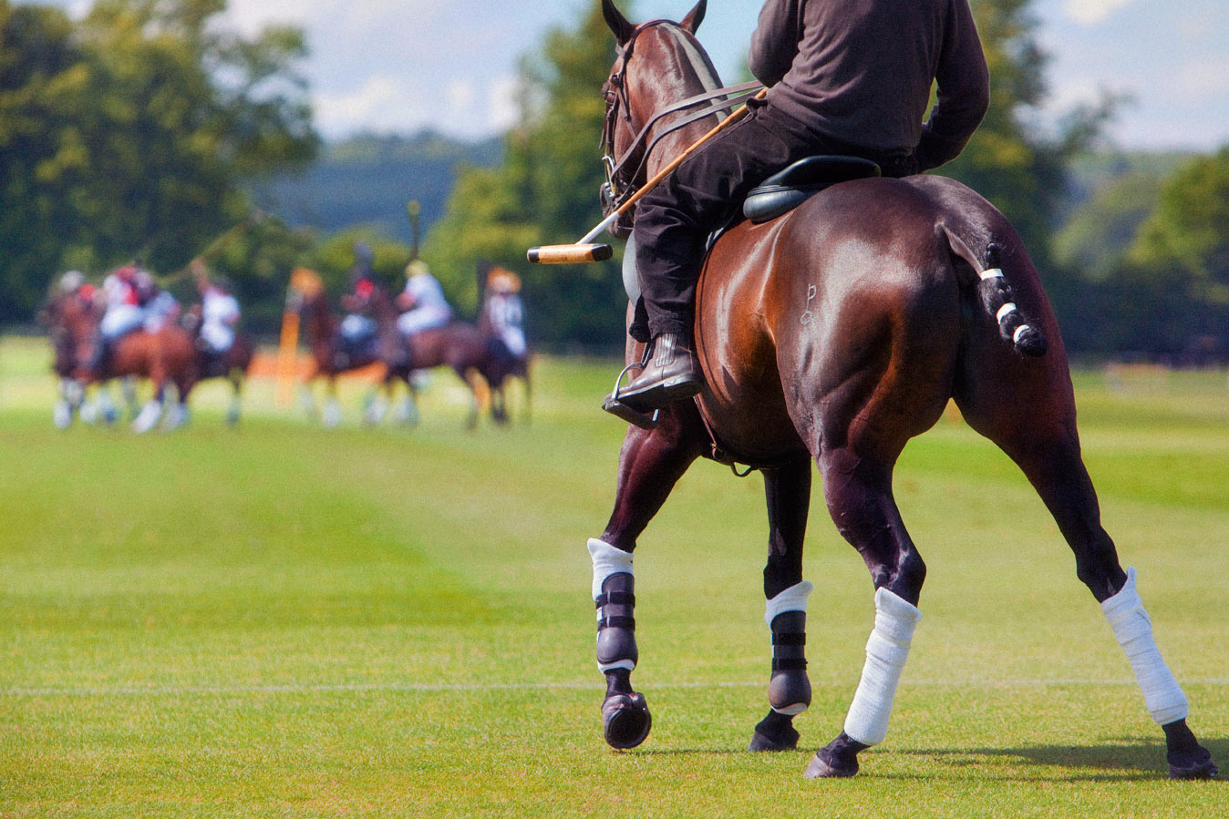 Spare-polo-pony-ready-at-Cowdray