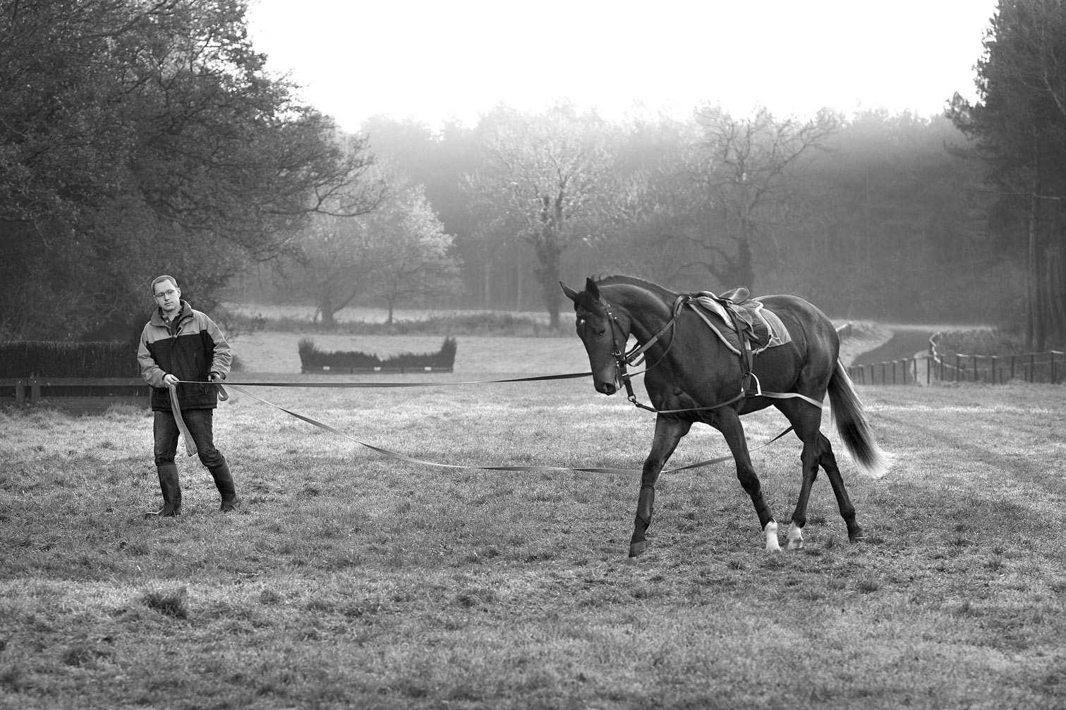 Yearling-being-lead-trained-B-W