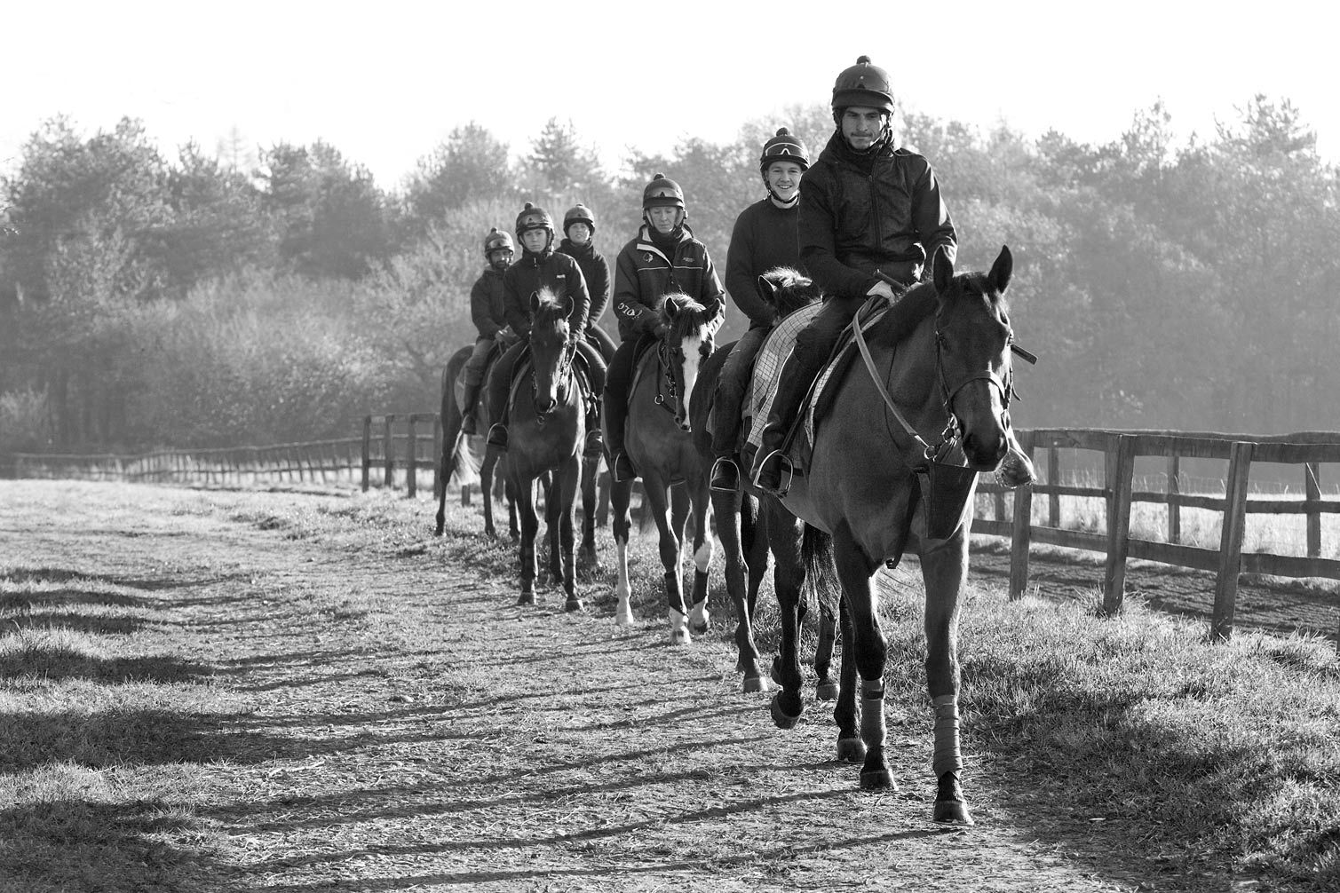 Yearlings-walking-back-to-yard